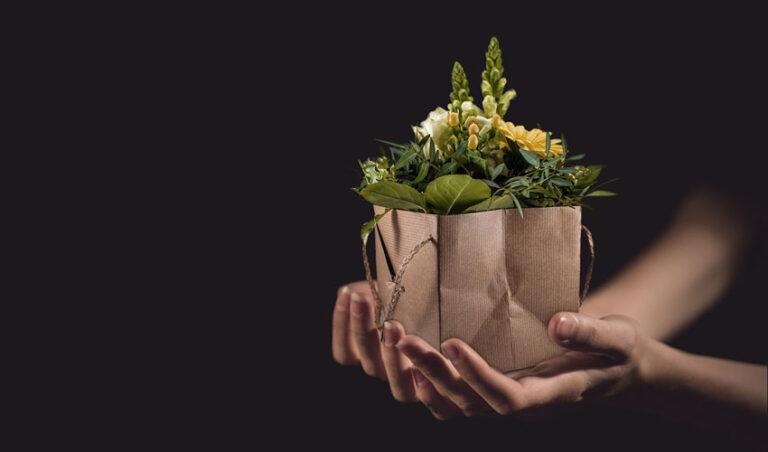 Če nekaj ljubiš – daj