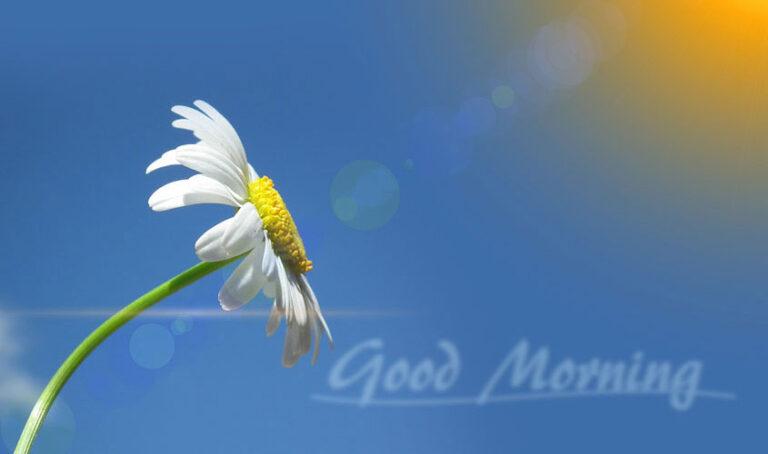 Vaja za dobro jutro in uspešen začetek dneva