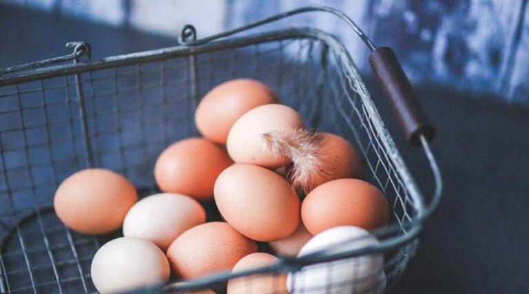Ne imej vseh jajc v eni košari!